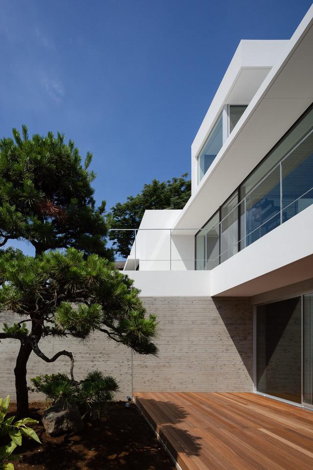 横滨 筱原台的两户住宅 image4