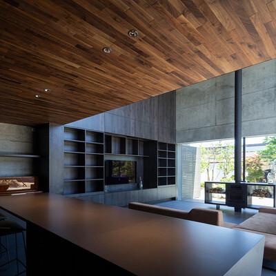 黒崎 敏 / APOLLO Architects & Associates : SCAPE thumbnail